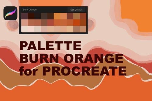 Palette Burn Orange.jpg